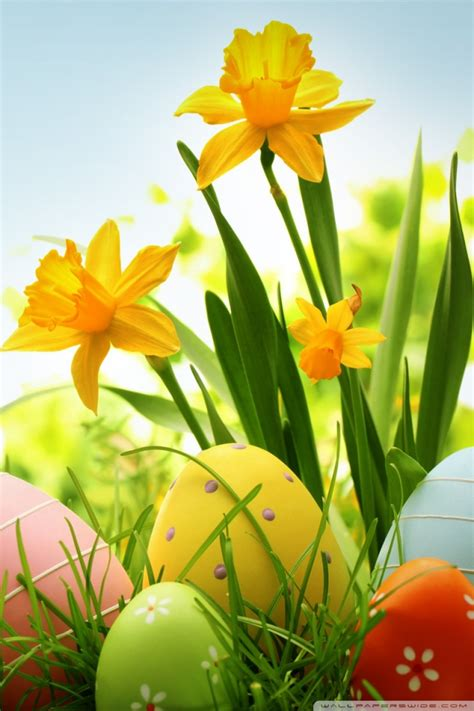cute easter iphone wallpapers  ideas