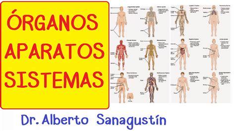 Órganos Aparatos y Sistemas: introducción Cuerpo humano