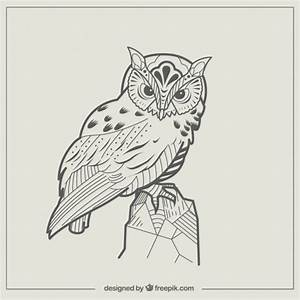 Abstract owl illustration Vector | Free Download
