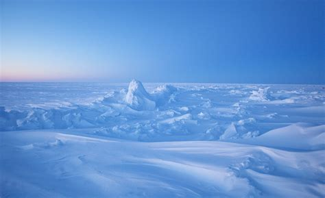 north pole facts  bet  dont   list love