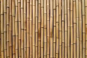 Bambu Fotos y Vectores gratis