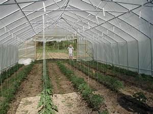 Fabriquer Un Treillage En Fil De Fer : tuteur tomates 5 techniques pour r aliser soi m me ses piquets ~ Voncanada.com Idées de Décoration