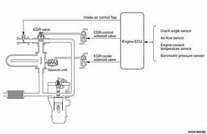 Exhaust Gas Recirculation  Egr  System