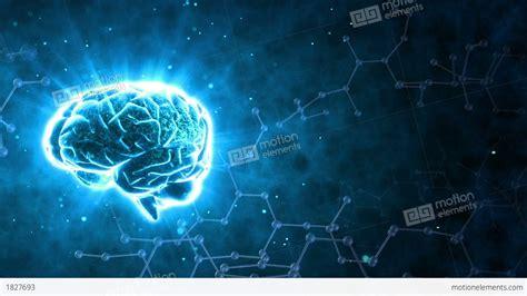 Digital Brain Wallpaper by Best 55 The Nervous System Wallpaper On Hipwallpaper