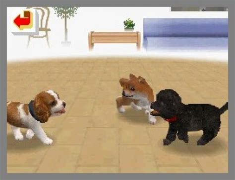 Gme Nintendogs Preview Nintendo Ds Screens S Allaboutgames Co Uk
