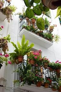 balkon bepflanzen diese tipps retten sie vor enttauschung With balkon bepflanzen ideen