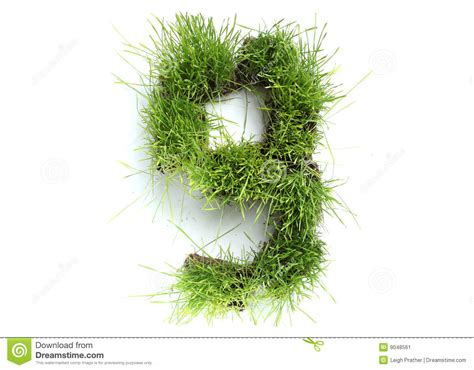and numbers letter a made of grass stock numbers made of grass stock image image 9048561