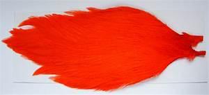 Boutique Orange Metz : metz b lge premium neck hackle grade 2 ~ Mglfilm.com Idées de Décoration