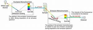 Absorption  Excitation And Emission Spectra