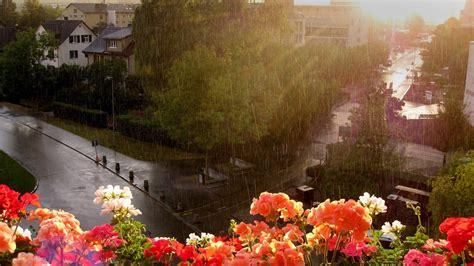 Rain in City Beautiful Pics | HD Wallpapers