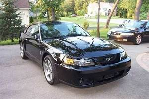 Buy used 2004 SVT Cobra Mustang Terminator in Grosse Pointe, Michigan, United States, for US ...