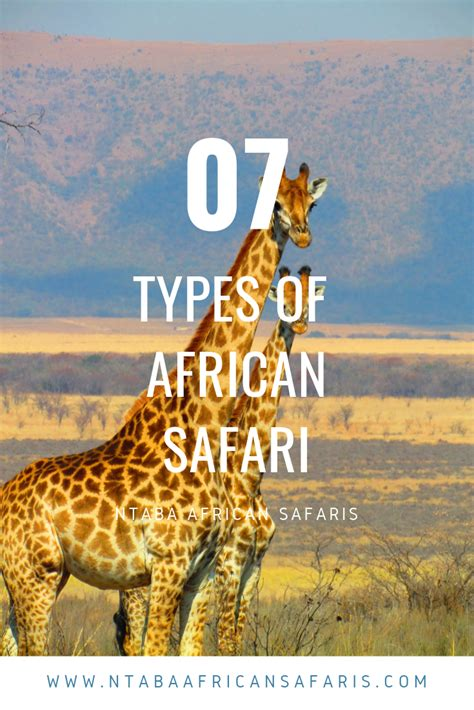Different types of African safari African safari