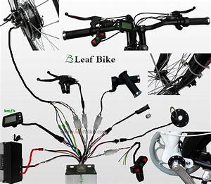 26 Inch 36v 750w Rear Bike Motor Wheel