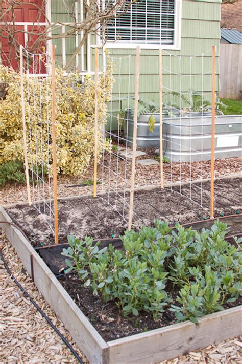 garden trellis netting simple pea trellis rake and make