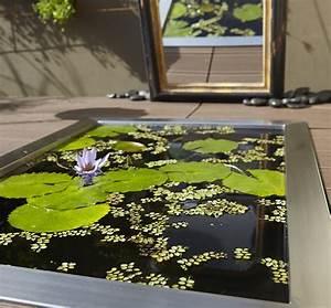 Bassin De Terrasse : tout savoir sur le petit bassin de jardin marie claire ~ Premium-room.com Idées de Décoration