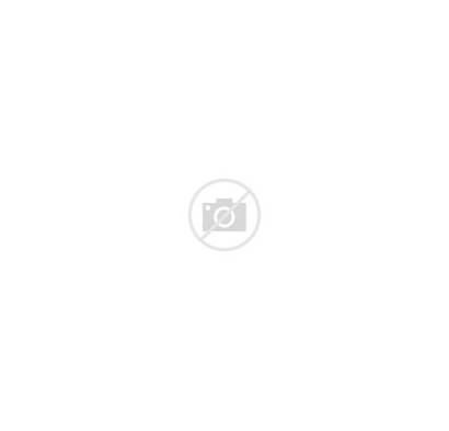 History Afro Mexico Month Mexicans Mexican