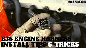 M50  M52 Engine Harness Install Tips And Tricks