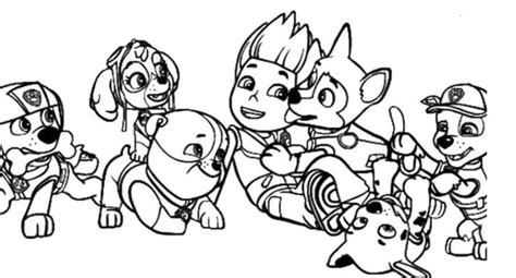Coloring Page Base Paw patrol coloring pages Paw patrol