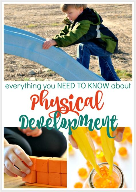 developmental skills for preschoolers and activities to 655 | Physical Development Collage