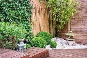 Plantes Pour Jardin Japonais Exterieur : am nagement ext rieur quelles plantes choisir pour un ~ Premium-room.com Idées de Décoration