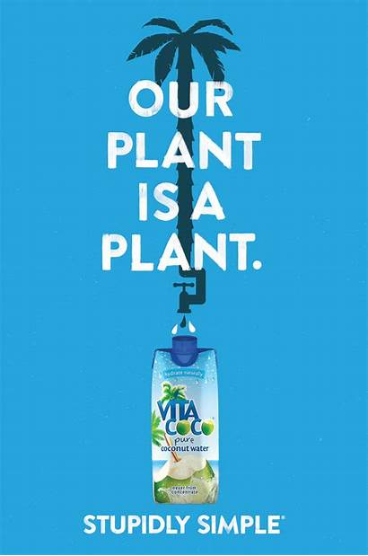 Water Ad Campaign Coconut Simple Coco Advertising