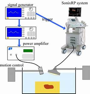 Shear Wave Propagation In Soft Tissue And Ultrasound Vibrometry
