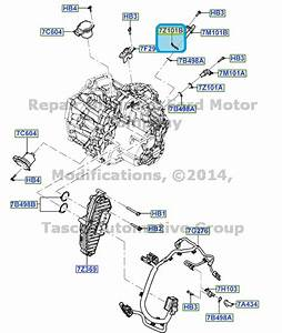 New Oem 6 Speed Automatic Transmission  Gft Ps195  Special Seal Fiesta  U0026 Focus