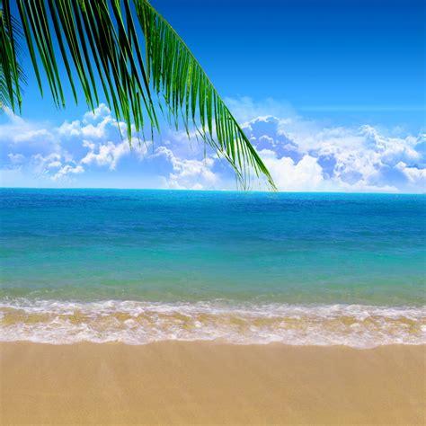 Summer Beach Background Wallpapersafari