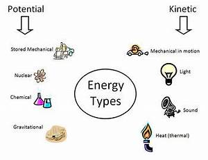 Different Types: Different Energy Types