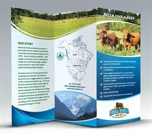 design brochure brochure design cgiplanet