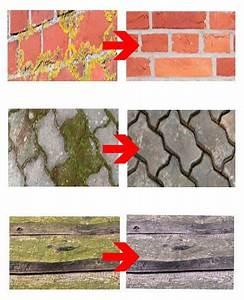 Grünspan Entfernen Holz : gr nbelagentferner 1000 ml hochkonzentrat gr nbelag entfernen entferner reiniger moos algen ~ Eleganceandgraceweddings.com Haus und Dekorationen
