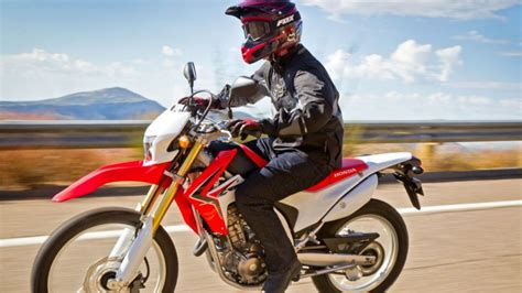 5 Types Of Motorcycles To Consider When Choosing Your