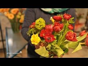Schnittblumen Länger Frisch : was h lt schnittblumen am besten frisch youtube ~ Watch28wear.com Haus und Dekorationen