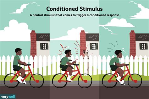 What Is A Conditioned Stimulus?