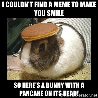 How To Find Memes - i couldn t find a meme to make you smile so here s a bunny