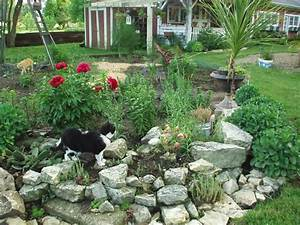 Small rock garden ideas need ideas for rocks birds blooms for Ideas for small rock gardens