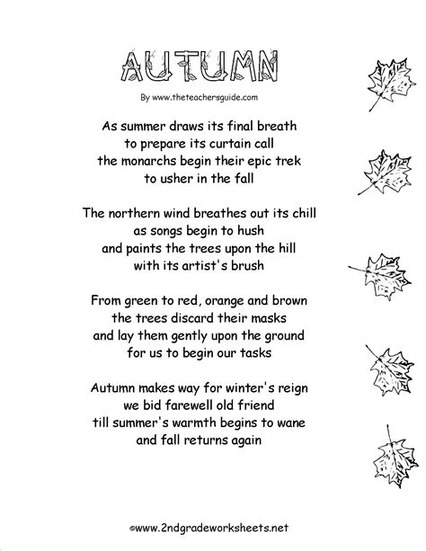 images  autumn worksheets  grade fall word search printable fall math