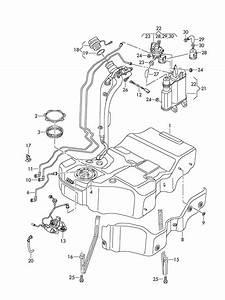 Volkswagen Passat With  Leak Detection Pump  Diagnosis Pump  Dedection  Ldp