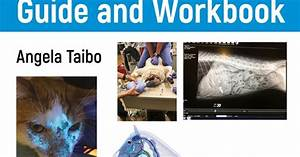 Veterinary Medical Terminology Guide And Workbook 2nd
