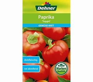 Paprika Pflanzen Pflege : dehner samen paprika 39 topgirl 39 dehner garten center ~ Markanthonyermac.com Haus und Dekorationen