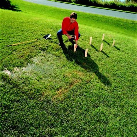 How To Improve Your Lawn's Drainage By Digging A Swale (shallow Ditch To Carry Water To A