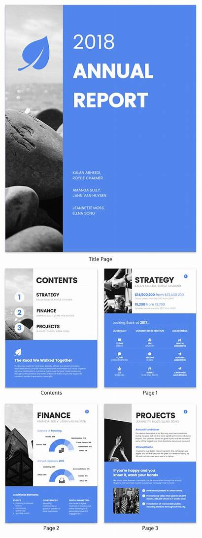 Report Annual Template Templates Examples Nonprofit Layout