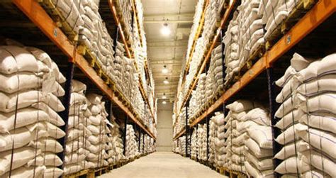 Commercial Seed Cold Storage
