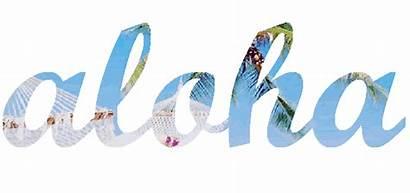 Aloha Animated Banners Summer Text Transparent Hawaii