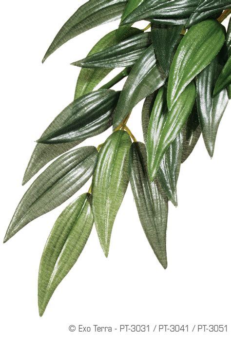 exo terra hanging rainforest plants