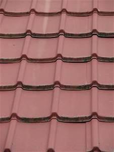 Kit Survitrage Castorama : toiture tole transparente levallois perret bordereau de ~ Premium-room.com Idées de Décoration