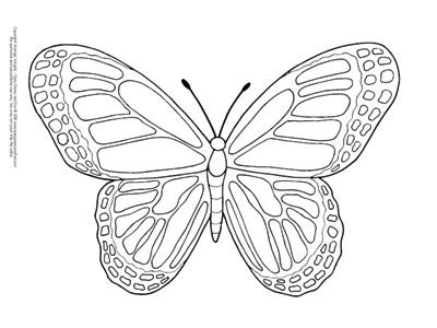 butterfly coloring pages  printable  cute