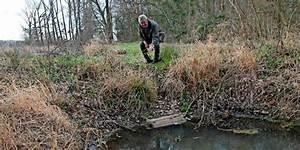 Geranien Vermehren In Wasser : uetze nutrias vermehren sich explosionsartig an uetzes ~ Watch28wear.com Haus und Dekorationen