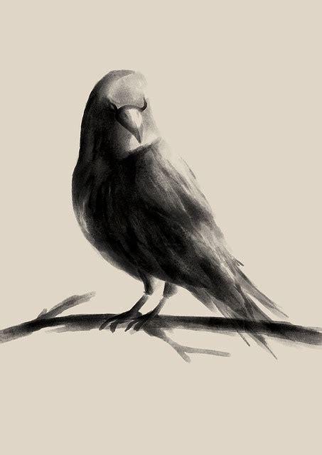 illustration raven watercolor drawing bird