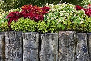 Pflanzen Im Japanischen Garten : gartenabgrenzung mit pflanzen gartenabgrenzung mit pflanzen beste garten ideen design ideen ~ Sanjose-hotels-ca.com Haus und Dekorationen